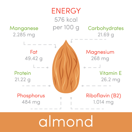 Nutritional value of almonds, vector infographic elements Vetores