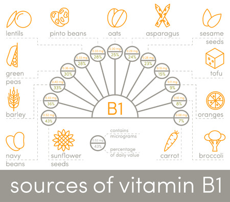 b1: Sources of vitamin B1, vector elements for infographic Illustration