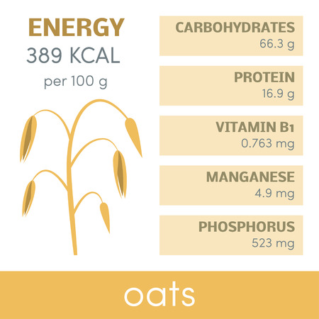 Nutritional value of oats, vector infographic elements
