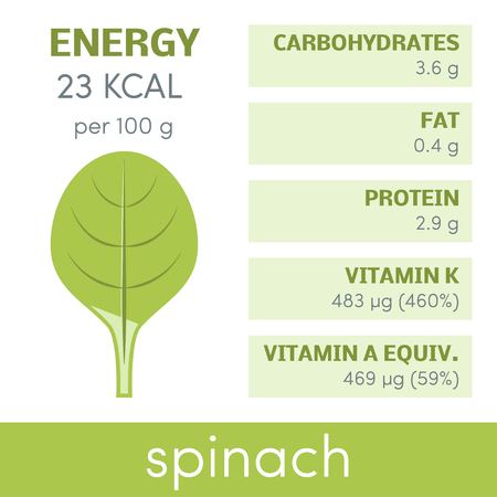 white phosphorus: Nutritional value of spinach, vector infographic elements Illustration