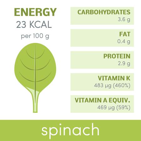 Valeur nutritive des épinards, des éléments de vecteur infographiques