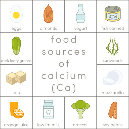 Food sources of calcium, vector flat food icons for infographic