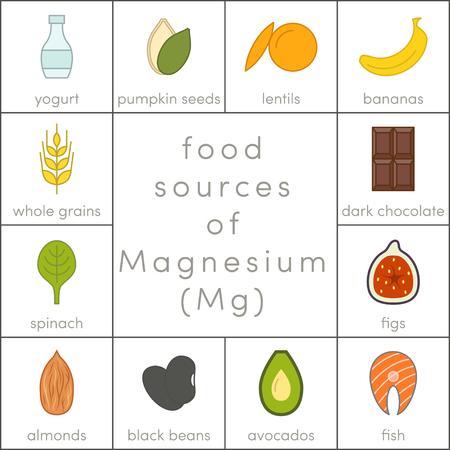 Fonti alimentari di magnesio, icone alimentari flat food per infographic Vettoriali