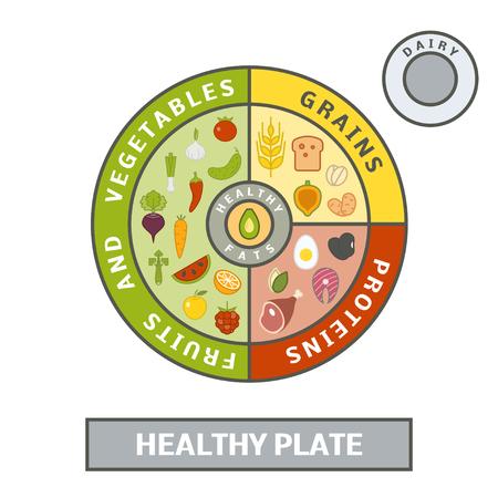 Gezond bord concept. Vector illustratie van gebalanceerde maaltijd