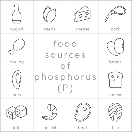 Food Sources Of Phosphorus Vector Outline Food Icons For