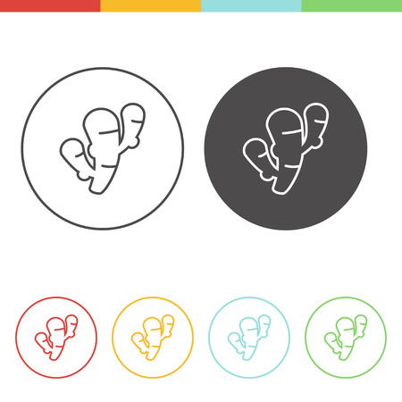 Vector set of ginger icons in thin line style Illustration