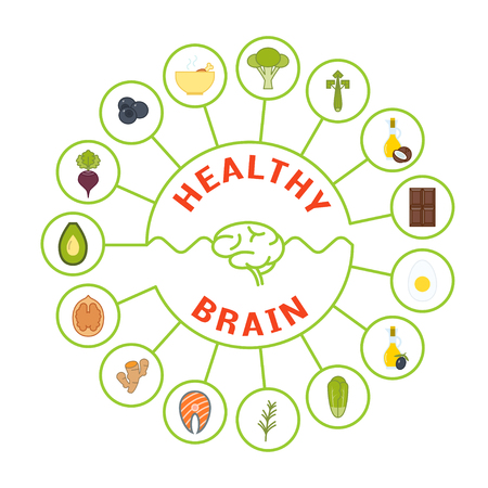 dietary: Vector foods that are good for brain