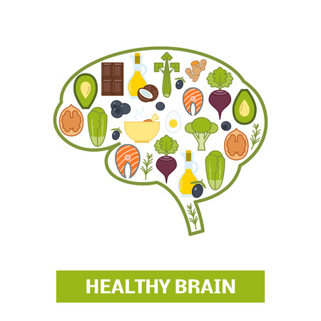 Healthy foods in shape of human brain, vector