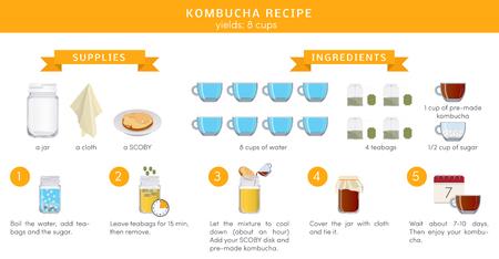 Kombucha tea recepie, vector infographic