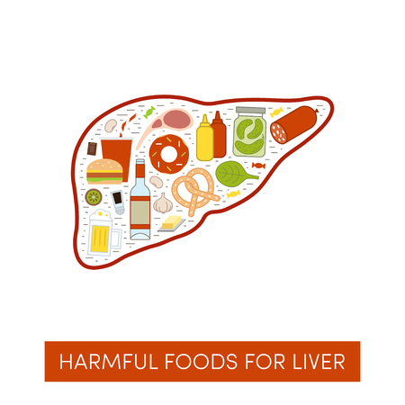 Vector cartoon illustration of harmul foods for a liver. Ilustração