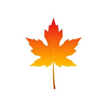 Colorful icon of autumn maple leaf. Vector illustration isolated on white background.