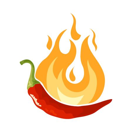 Pepper in flame icon. Fresh red chili condiment. Vector illustration isolated on white background in flat or cartoon style.