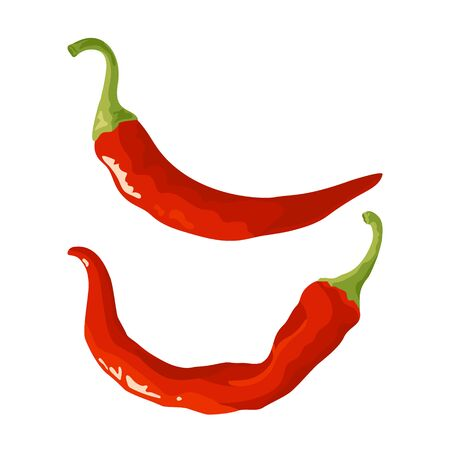Chili pepper icons. Fresh red cayenne. Vector illustration isolated on white background in flat or cartoon style.