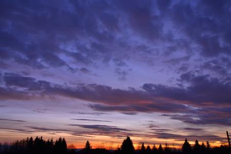 nature silhouette: sunset sky cloud color tree nature silhouette