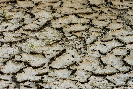 sequias: cansada tierra agrietada del desierto sequ�a Foto de archivo