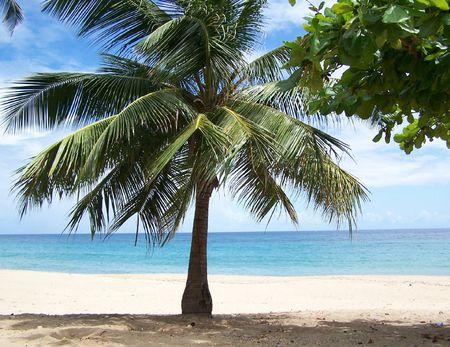 carribean: Public Beach at Isabela Puerto Rico