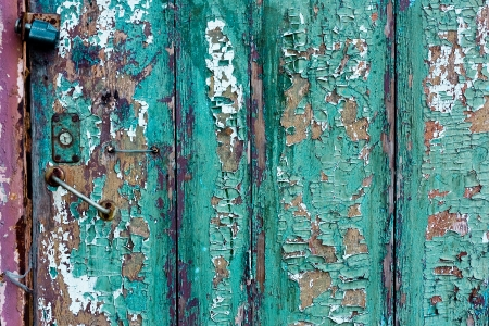 Green cracky grunge door of Wood boards photo