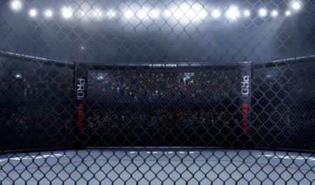 Leeg mma arena zijaanzicht onder lichten. complete tribune. 3D-weergave Stockfoto