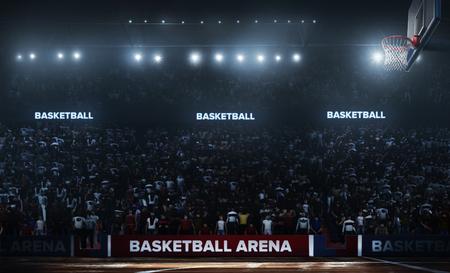 3D에서 전문 농구 경기장입니다.
