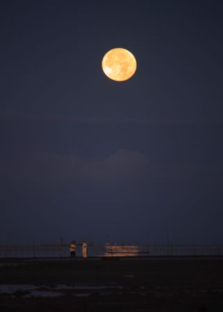 mothers sitting under a full moon at dawn photo