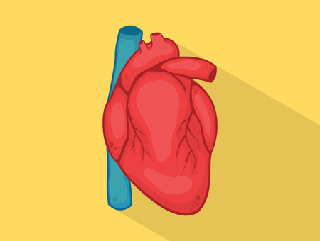human heart with strong yellow color and red with long shadow style isolated - vector illustration