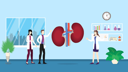 human kidneys anatomy structure health care checkup analysis identifying by doctor people on the hospital - vector illustration