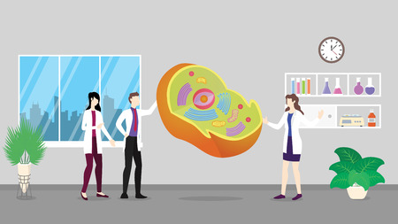 human cell anatomy structure health care checkup analysis identifying by doctor people on the hospital - vector illustration