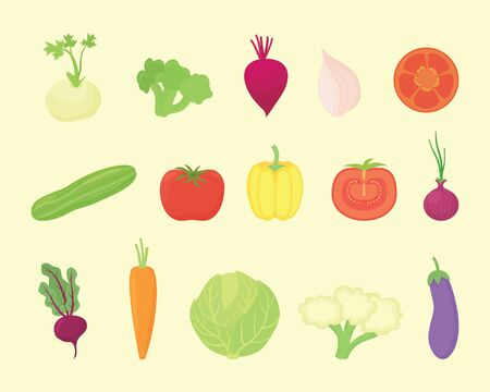 vegetable set collection with various kind and various colors with modern flat style - vector illustration 일러스트