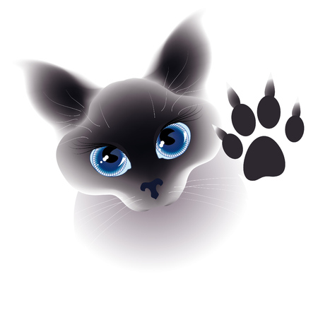 whisker characters: Cat. Illustration for decoration, food, show, pet shop Illustration