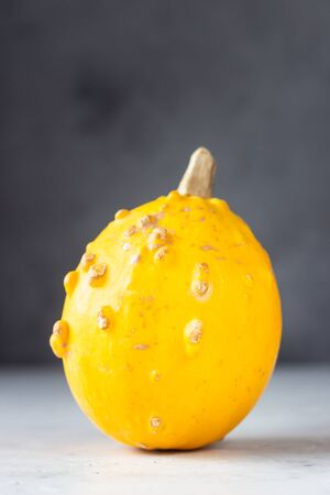 Trendy ugly organic small pumpkin on light gray stone background. Ugly food concept. Strange pumpkins.
