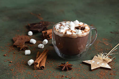 Hot cocoa or chocolate with marshmallow, anise, cinnamon and pieces of chocolate. Selective focus, green background. Cozy holidays concept, Christmas and New Year drink.