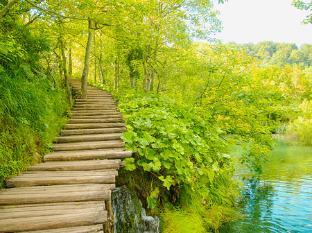 Romantic street is a curved and uphill wooden deck in the green forest of the Plitvice Lakes National Park