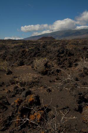 El Hierro landscape, Canary island, Spain Stok Fotoğraf