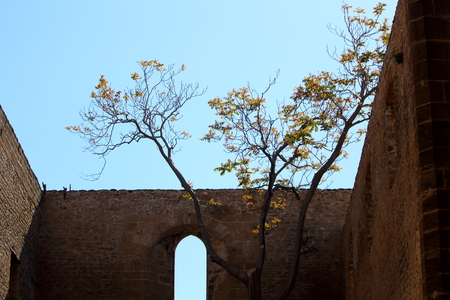 view of the church of Santa Maria Spasimo in Palermo, Italy Archivio Fotografico - 123770149