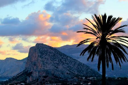 evocative image of sunrise in Sicily with palm in the foreground and hills in the background Archivio Fotografico - 127175730