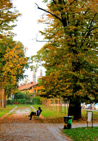 tree-lined avenue at sunset in autumn with the figure of a man sitting on a bench with a church in the background