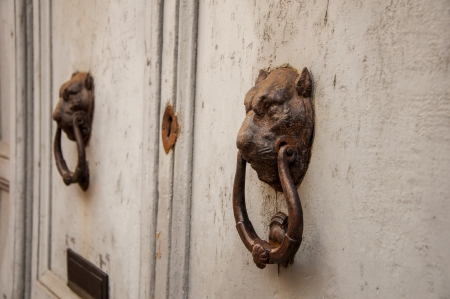 particulate: particulate old door fattening with clappers lavoarati lion s head Stock Photo