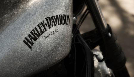 harley davidson: Detail of Harley Davidson