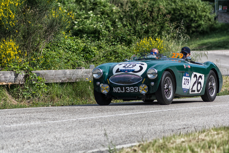 PESARO COLLE SAN BARTOLO, ITALY - MAY 17 - 2018: AUSTIN HEALEY 100 S 1953 on an old racing car in the Mille Miglia rally 2018 the famous italian historical race (1927-1957)