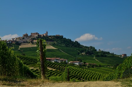 La morra, Piedmont, Italy. July 2018. Outside the town, the magnificent vineyards. A glimpse of the beautiful countryside of the place. Imagens