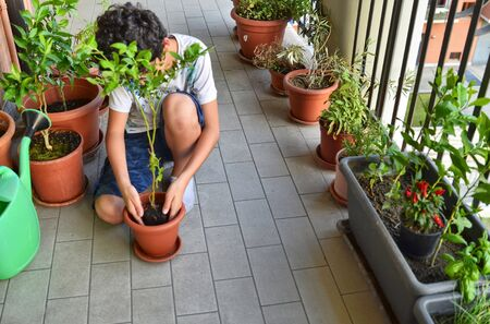A young Caucasian boy is preparing to pot a blueberry plant. He holds it in the center of the vase, which is already partially filled with soil, waiting for it to be filled.