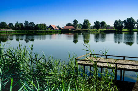Netherlands, Goes. Dutch countryside lake landscape: reeds alternate with wooden piers. The dense forest surrounds the lake. The green color dominates the scene. Summer day, towards evening. Nobody.