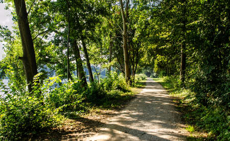 Netherlands, Goes. Lake landscape : the path that runs along the perimeter of the lake is surrounded by the foliage of the trees, you can see the water. Concept of nature and relaxation. Stockfoto