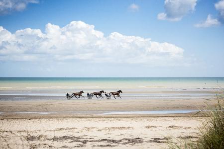Paarden draven langs het strand van Omaha in Normandië Stockfoto