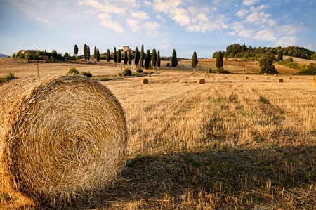 Val Dorcia, Tuscany. Typical Tuscan landscape with round bales after harvest. Stock Photo