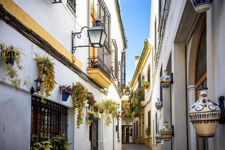 Cordoba: Alte typische Straße in der Juderia mit Pflanzen und Blumen. Andalusien, Spanien.