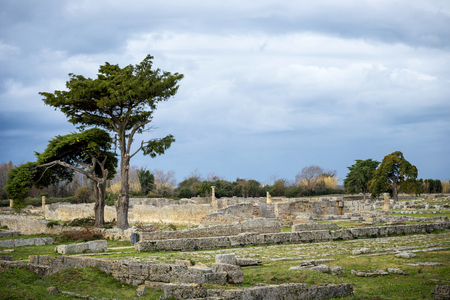 Paestum: The ancient ruins of religious buildings of the ancient Greek domination. italy