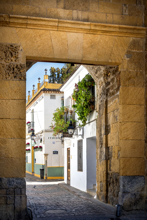 Cordoba: old typical street in the Juderia with plants and flowers. Andalucia, Spain. Redactioneel
