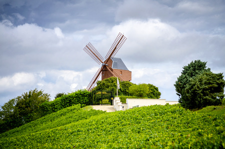 Champagne. Vineyard and windmill Champagne Region near Vernezay France