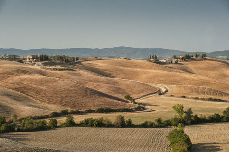 The Tuscan landscape, depicted in countless works, has been